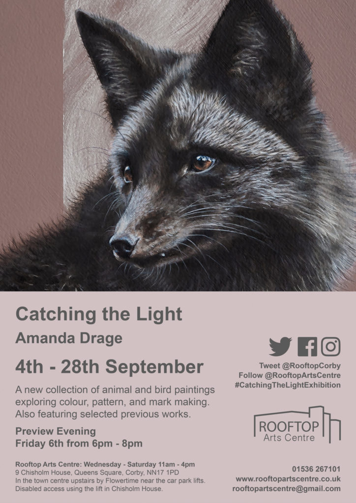 Poster advertising Catching The Light Exhibition by artist Amanda Drage